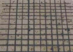 Molybdène-tantale