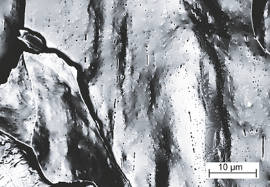 Rasterelektronenmikroskopische Aufnahme einer WVM-Bruchfläche