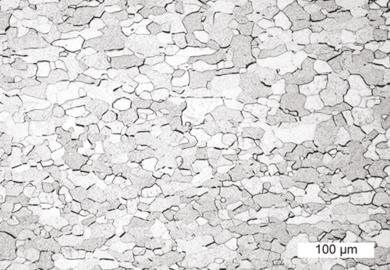 Lichtmikroskopische Aufnahme eines Wolfram Bleches