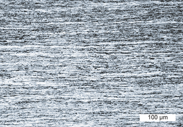 Optical micrograph of a tungsten sheet